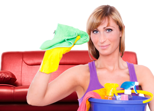 Carpet Cleaners Plaistow E13 | Top to Bottom Cleaners Services